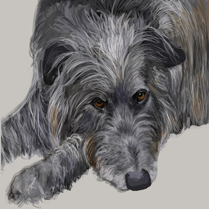 Scottish Deerhound - Dogone Art