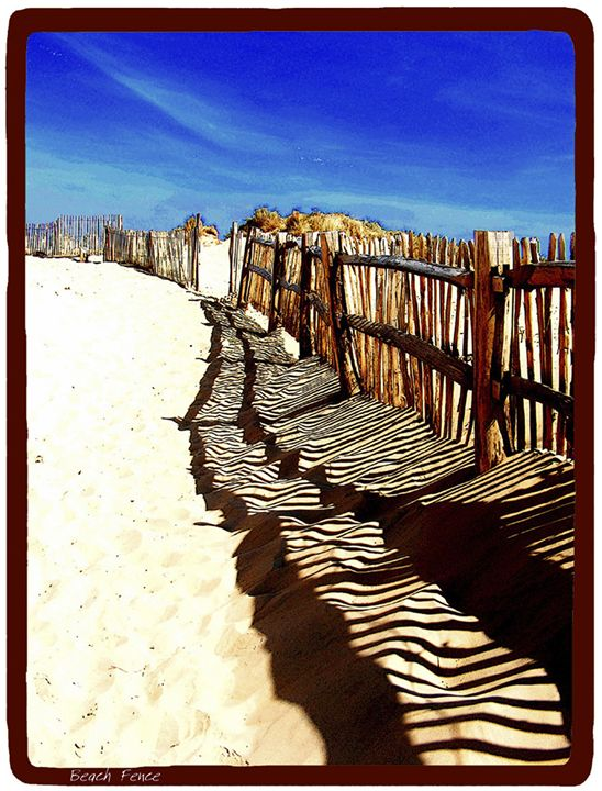 Beach Fence - Lighthouse Publishing
