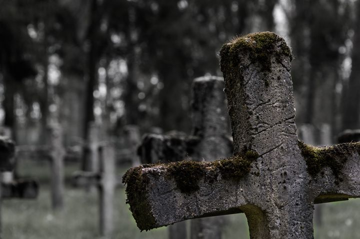Abandoned graveyard - Photography Vos