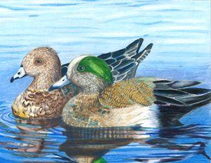 Ducks 2014 - Gabby