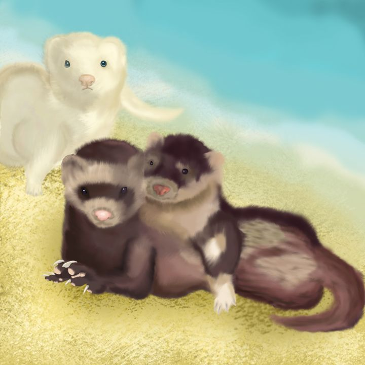 Beach Ferrets - Nathan's Artwork