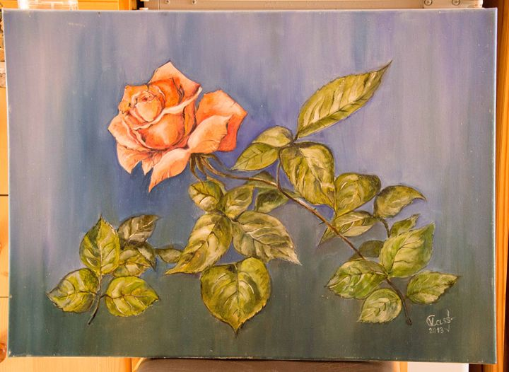 The red rose, oil painting, canvas - Oil painting