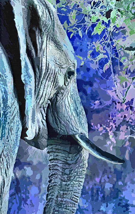 Elephant - Dori Marie