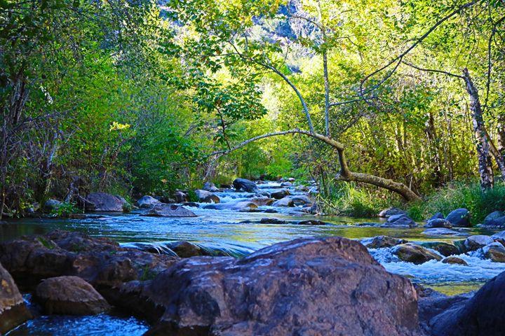 Fossil creek - Paige Van Dyke