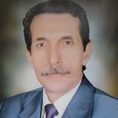 Mohamed enany