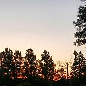 Sunrise Sunlight