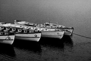 Rowing back to B&W Life