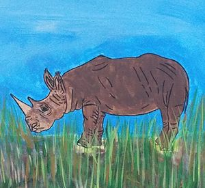 The Endangered Rhino
