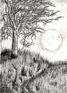 Moon's Ascendance
