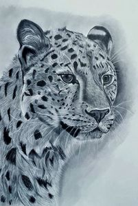 Leopard - Pet Portraits for Charity