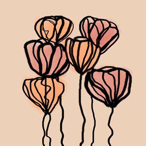 Tulips - Lorelei