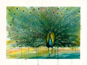 All Eyes - Peacock - Bradley's Art