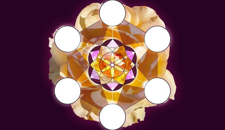 Blossom Mandala - Empty Cup Gallery