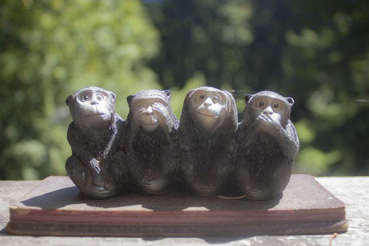 4 Monkeys - Empty Cup Gallery
