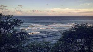 Daimondhead Surf Safari