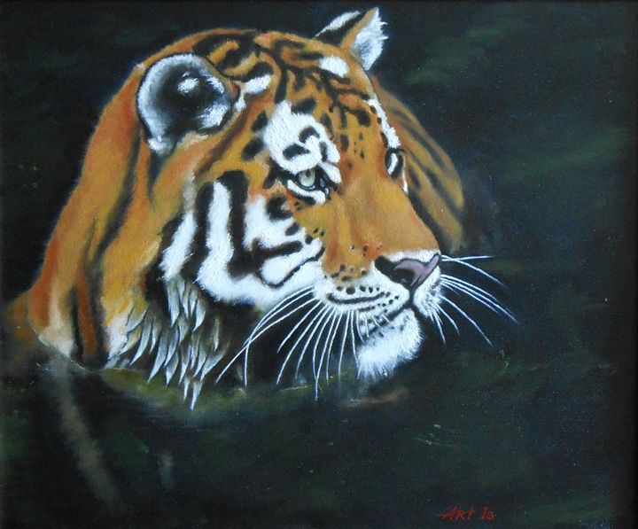 """TIGER IN A RIVER"" - arthuris"