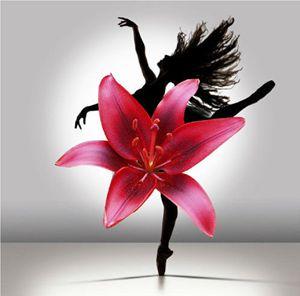 Dancer In Petals