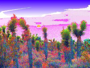 Mojave Blaze