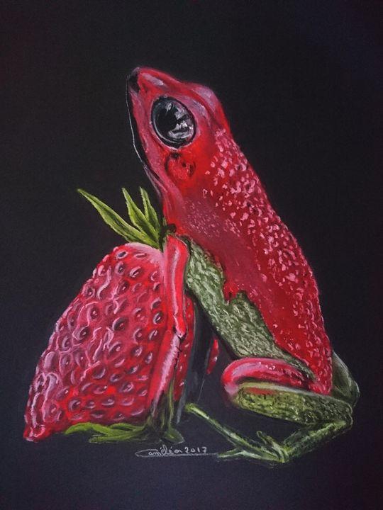 strawberry frog - The Chameleon
