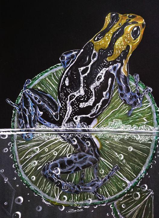 mojito frog - The Chameleon