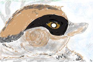 Sparrow - ArtRipple
