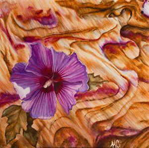 Santa Fe Hibiscus