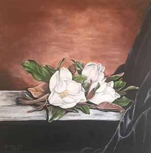 Magnolias display
