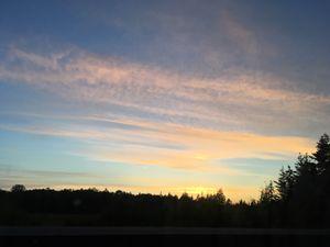 Blushing Sunset