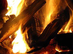 Wood Flames