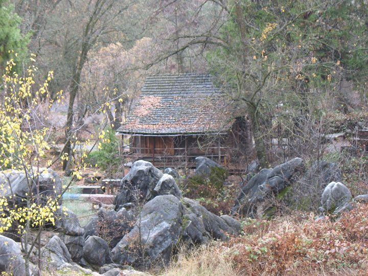 Columbia Cabin - Michael Dorsett