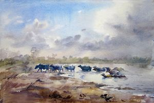 Ravi river Lahore by Muddassir Kazmi