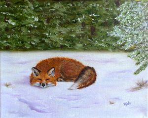 The Red Fox of Winter