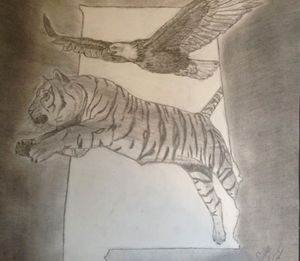 Flying with Tiger