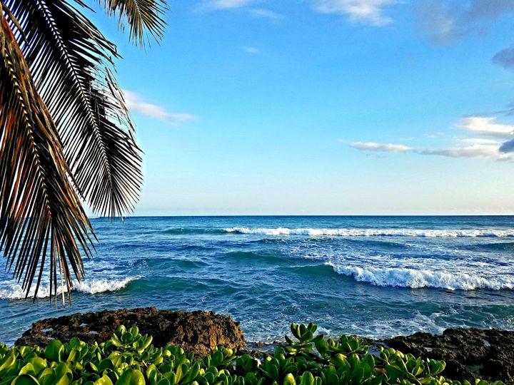 Ocean Breeze - ELF Natural Beauty