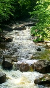 The Flowing Pemi