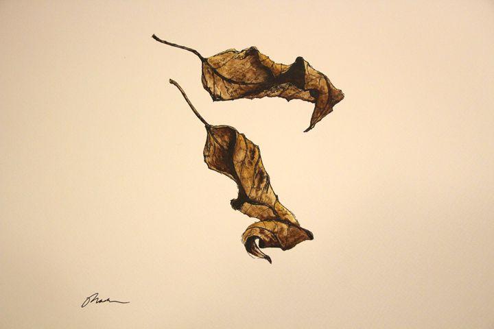Fallen Leaves - Mark S Fine Art