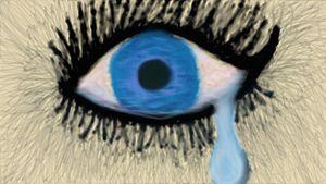 Single Tear