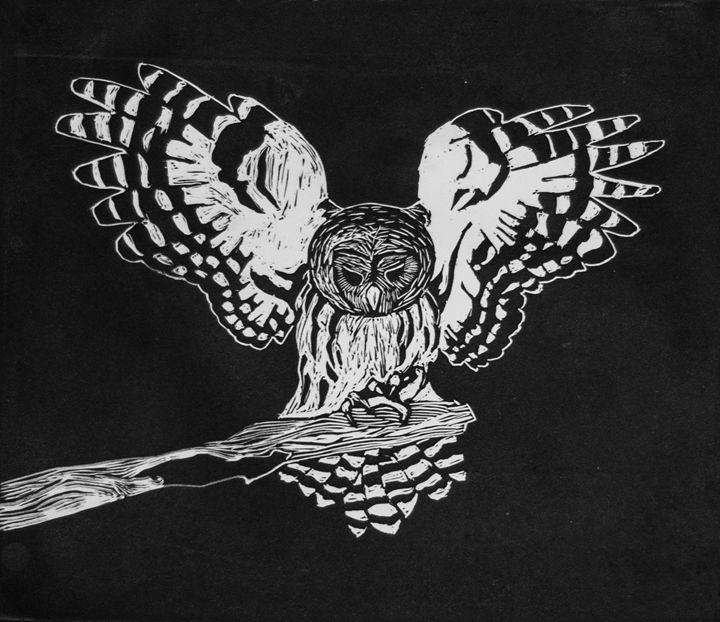 Owlish - Tazio Yandell