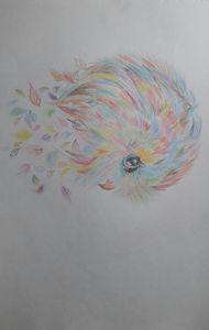 Colourful little bird