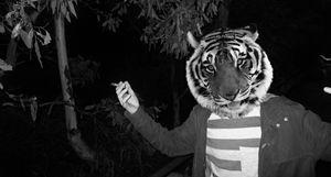 Tiger Youth no.1