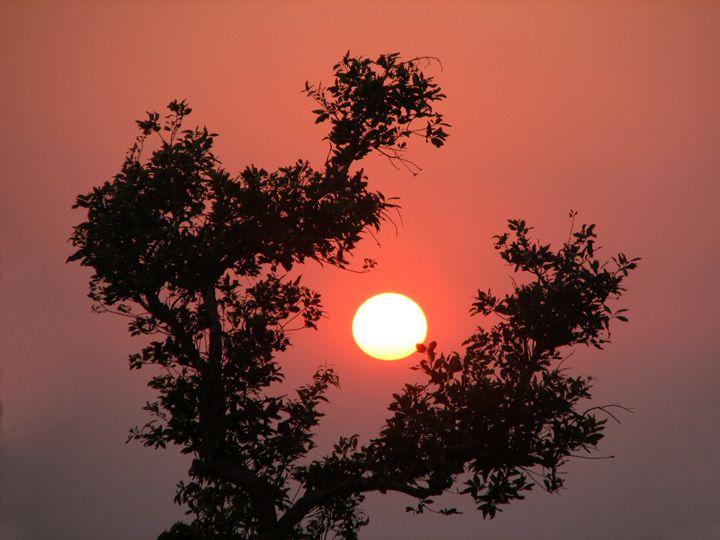 Catching the sun - Capturing Life