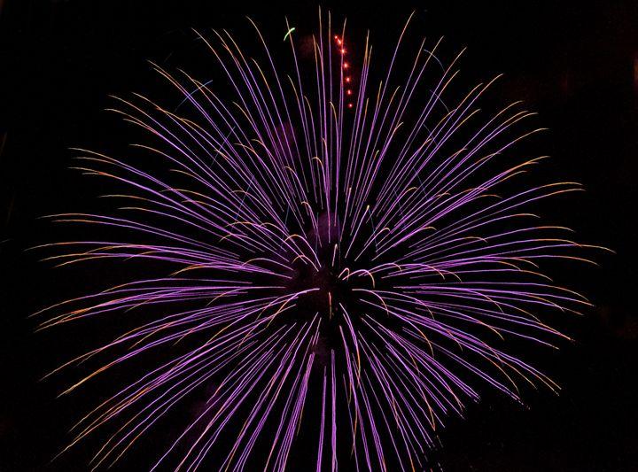 Purple Firework - Capturing Life