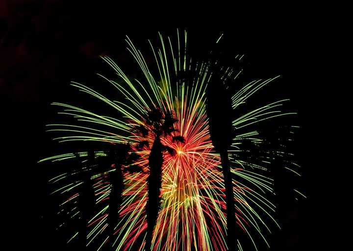 Firework with trees - Capturing Life