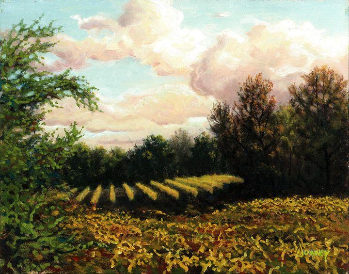 Fall Ambers - Carl Downey Art Gallery