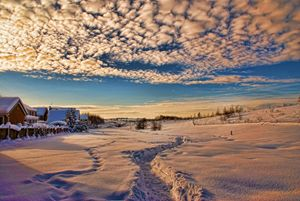 Snow View...