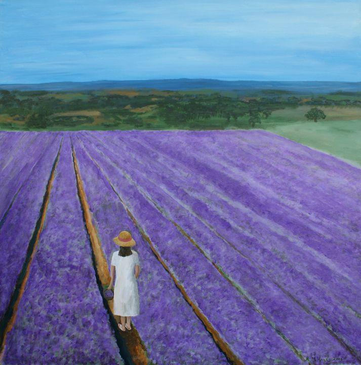 Lavender Field - Robert Harris