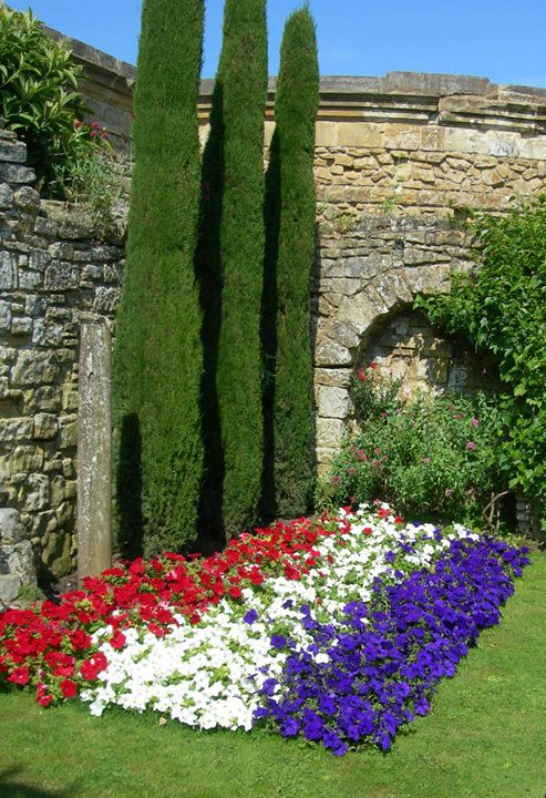Colourful Flower Bed - Robert Harris