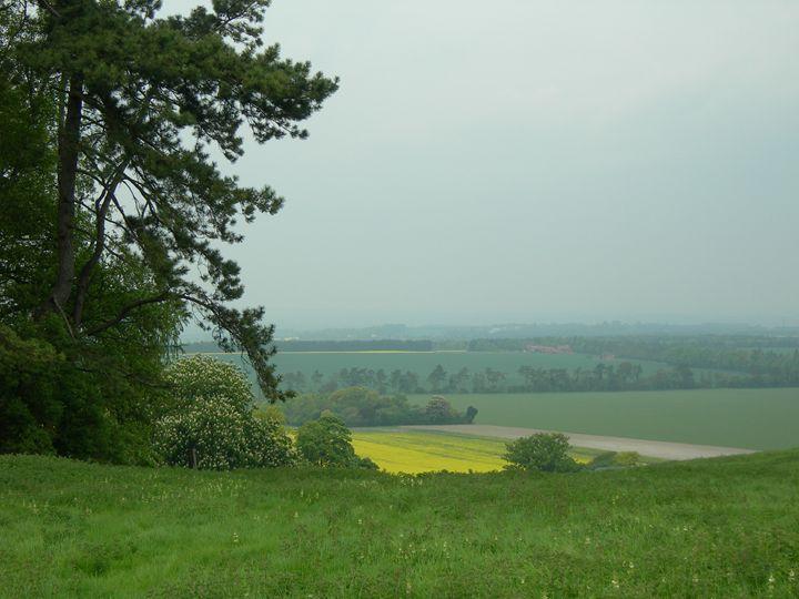 Near East Ginge - Robert Harris