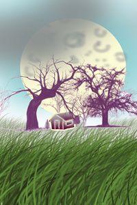 The moon illution