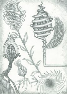 Different Flora